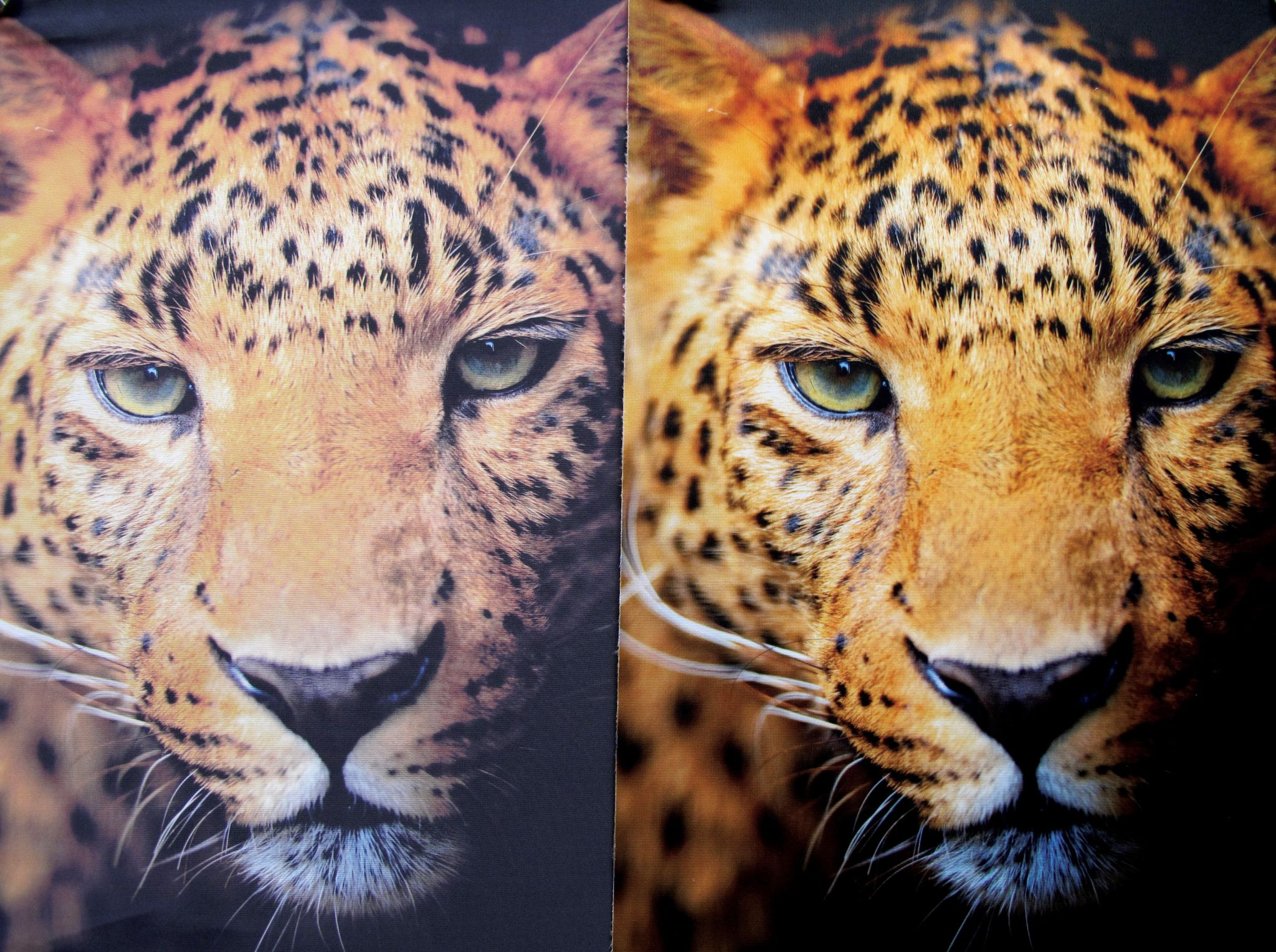 dye sublimation vs inkjet