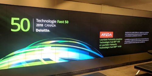 Ayuda wins Deloitte Fast50 and Fast500 in 2018.