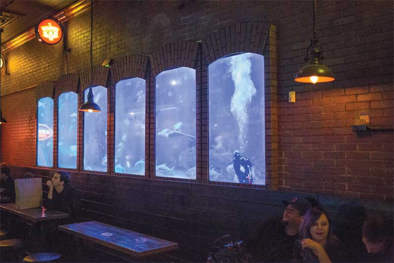 This installation at a Smokin' Joe's pub in Florida shows the innovative use of digital displays.